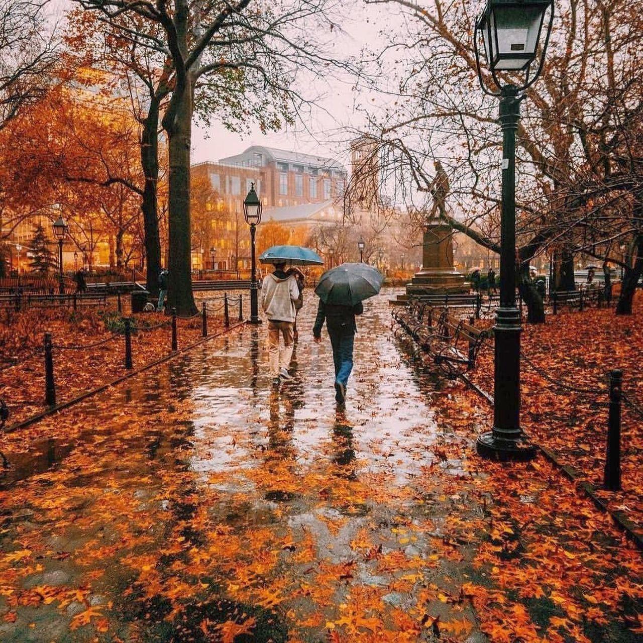 Previsioni meteo 17 novembre: ancora piogge, ma poi migliora