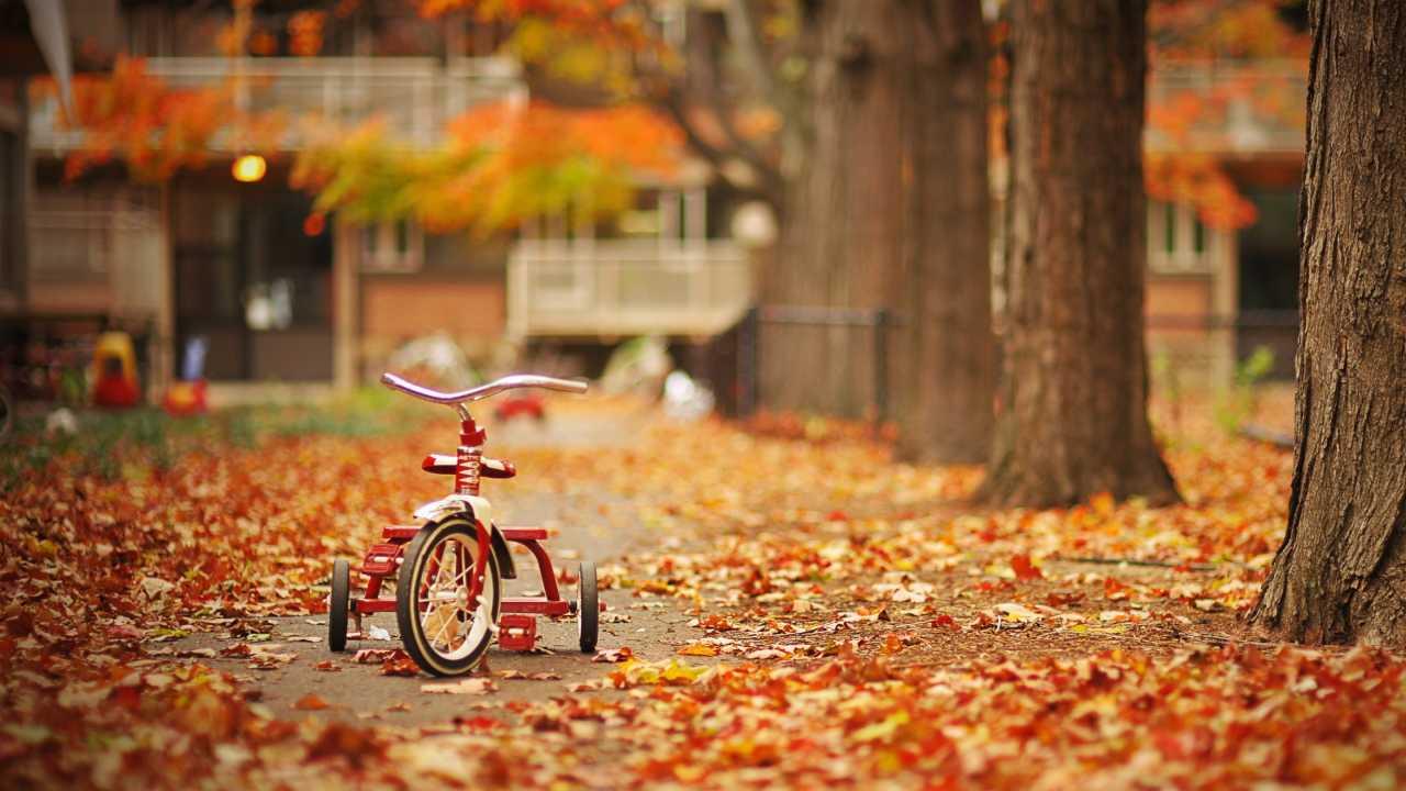 Cagliari autunno