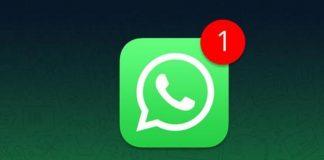 Notifica Whatsapp