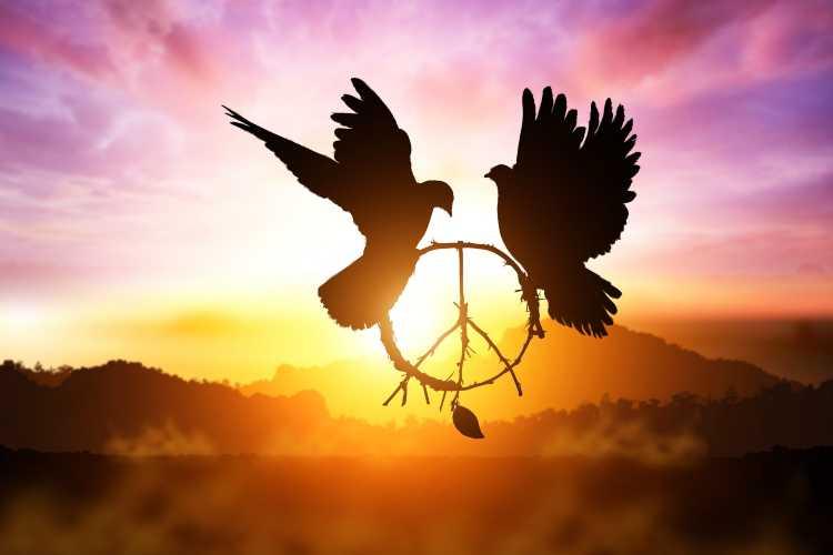 I segni zodiacali più pacifici