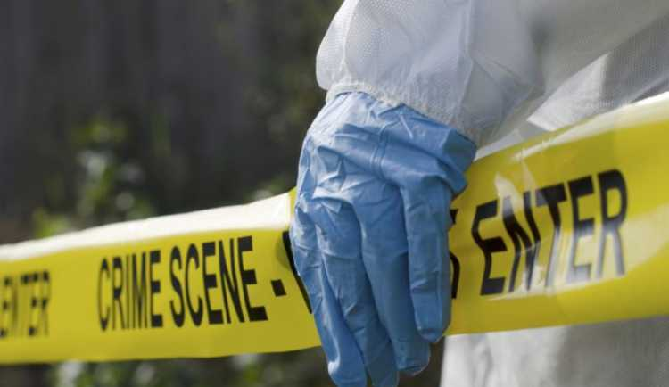 Test detective scena del crimine