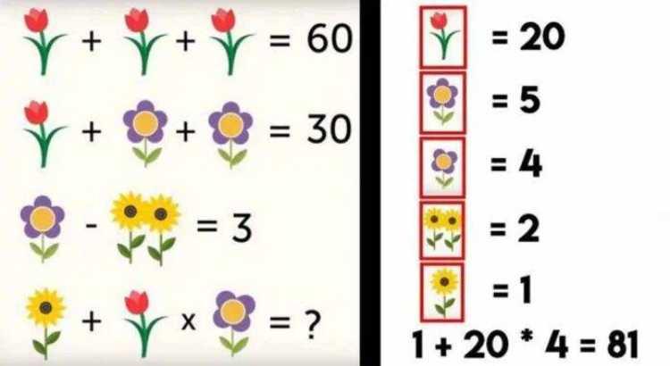 Test fiori soluzione