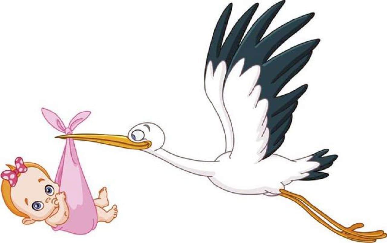 Quarto figlio per la coppia vip più amata e stavolta arriva la cicogna rosa!