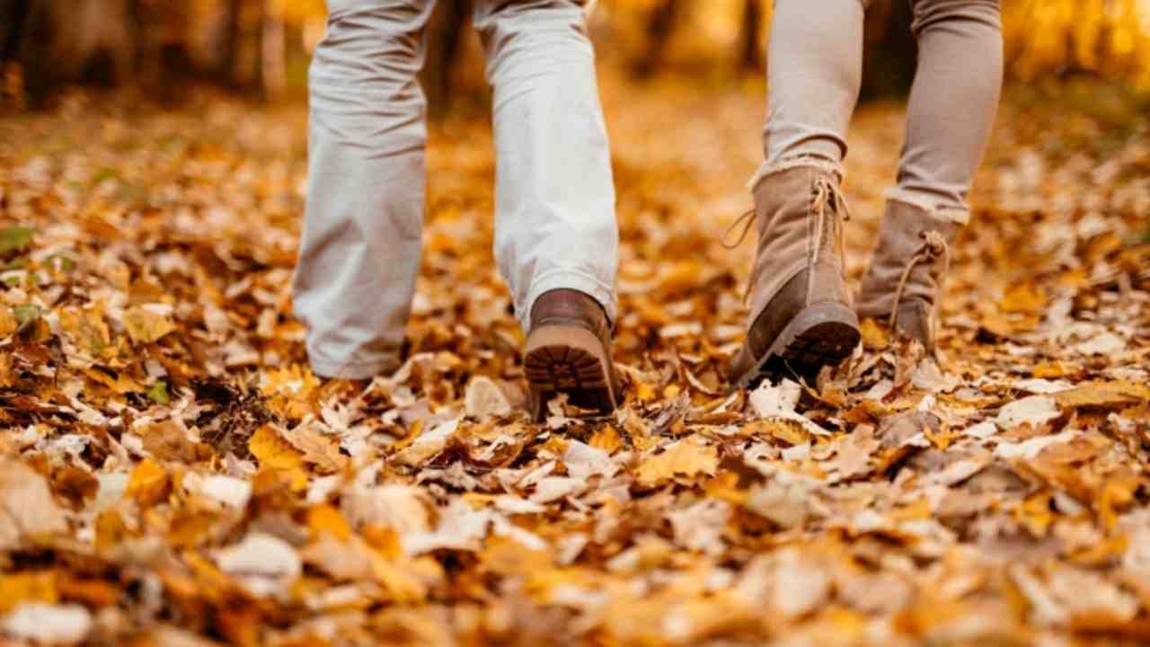 Test oggetto dell'autunno